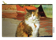 Carry-all Pouch featuring the photograph Old Town Cat by Nikolyn McDonald