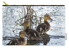 Carry-all Pouch featuring the photograph On Adventurte by I'ina Van Lawick