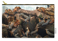On The Rocks Carry-all Pouch