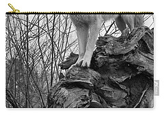 Carry-all Pouch featuring the photograph On Top by Shari Jardina