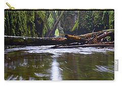 Oneonta Pano Carry-all Pouch by Jonathan Davison