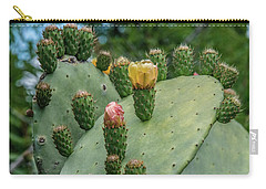 Opuntia Cactus Carry-all Pouch by Patrick Boening