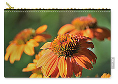 Carry-all Pouch featuring the photograph Orange Cone Flowers In Morning Light by Sheila Brown