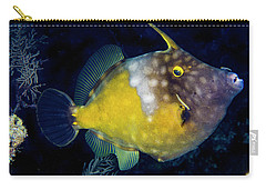 Carry-all Pouch featuring the photograph Orange Filefish by Jean Noren