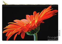 Orange Gerbera On Black Carry-all Pouch