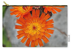 Orange Hawkweed Carry-all Pouch