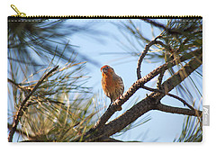Carry-all Pouch featuring the photograph Orange House Finch 2 by Marilyn Hunt