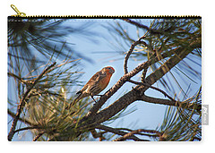 Carry-all Pouch featuring the photograph Orange House Finch by Marilyn Hunt