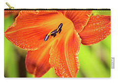 Carry-all Pouch featuring the photograph Orange Lilly Of The Morning by Ken Stanback