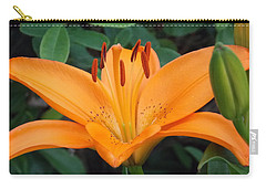 Orange Lily Carry-all Pouch by Catherine Gagne