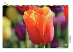 Orange Tulip In Franklin Park Carry-all Pouch