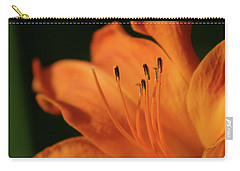 Orange Wave 3096 H_2 Carry-all Pouch