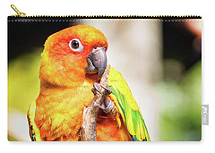 Orange Yellow Parakeet Carry-all Pouch by Stephanie Hayes