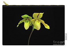 Orchid Paphiopedilum Druid Spring Carry-all Pouch