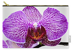 Orchid Carry-all Pouch by Tim Townsend