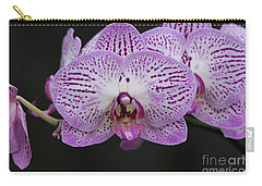 Orchids On Black Carry-all Pouch