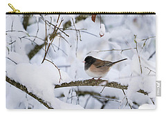 Carry-all Pouch featuring the photograph Oregon Junko In Snow by Brian Bonham
