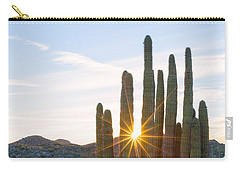Carry-all Pouch featuring the photograph Organ Pipe Cactus by Patricia Davidson