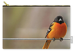 Oriole On The Line Carry-all Pouch