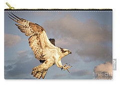 Osprey  Carry-all Pouch by Alice Cahill