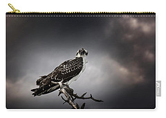 Osprey Carry-all Pouch by Chrystal Mimbs