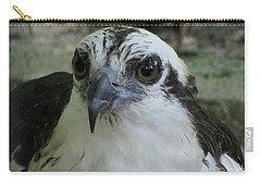 Osprey Portrait Carry-all Pouch