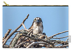 Osprey Eyes Carry-all Pouch by Paul Freidlund