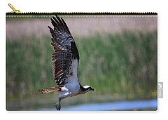Carry-all Pouch featuring the photograph Osprey In Flight by Gary Hall