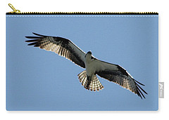 Osprey In Flight Carry-all Pouch by Robert Banach