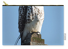 Red Shoulder Hawk On A Post Carry-all Pouch by Paul Freidlund