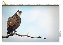 Carry-all Pouch featuring the photograph Osprey Out On A Limb by AJ Schibig