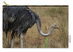 Ostrich In The Grass 2 Carry-all Pouch