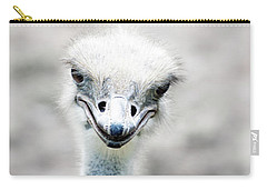 Ostrich Carry-All Pouches