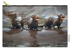 Otter Pup Triplets Carry-all Pouch by Jamie Pham