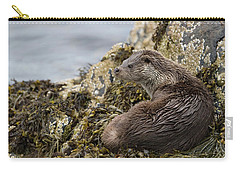 Otter Relaxing On Rocks Carry-all Pouch