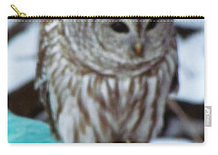 Our Own Owl Carry-all Pouch
