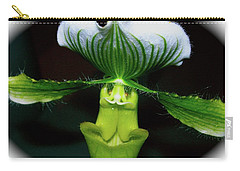 Carry-all Pouch featuring the photograph Out Of Darkness by Randy Rosenberger