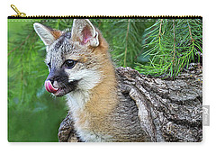 Out Pops A Gray Fox Carry-all Pouch