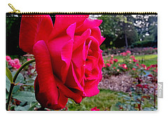 Carry-all Pouch featuring the photograph Outstanding by Robert Knight