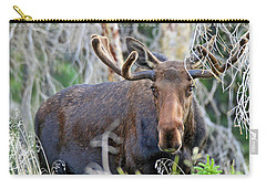 Carry-all Pouch featuring the photograph Overlooking Moose by Scott Mahon
