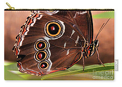 Owl Butterfly Portrait Carry-all Pouch
