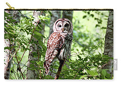 Owl In The Forest Carry-all Pouch by Peggy Collins