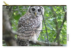 Carry-all Pouch featuring the photograph Owl On A Limb by Donald C Morgan