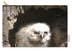 Owlet Carry-all Pouch