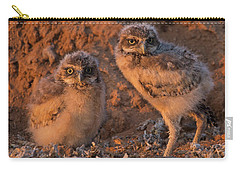 Owlet Siblings Carry-all Pouch