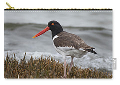 Oyster Catcher Carry-all Pouch