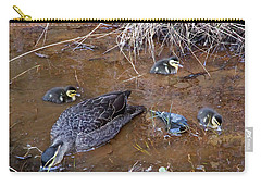 Carry-all Pouch featuring the photograph Pacific Black Duck Family by Miroslava Jurcik