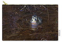 Carry-all Pouch featuring the photograph Pacific Black Duckling by Miroslava Jurcik