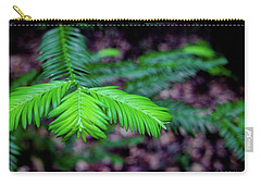 Pacific Yew Carry-all Pouch by Henri Irizarri
