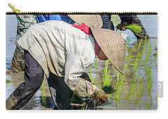 Paddy Field 2 Carry-all Pouch by Werner Padarin